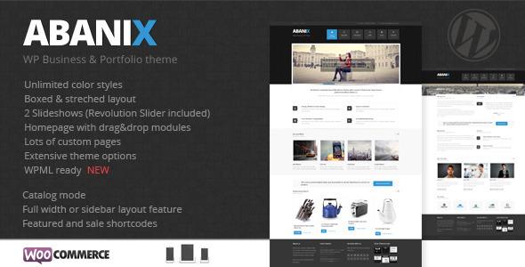 Abanix Geschäft, Portfolio und Geschäft