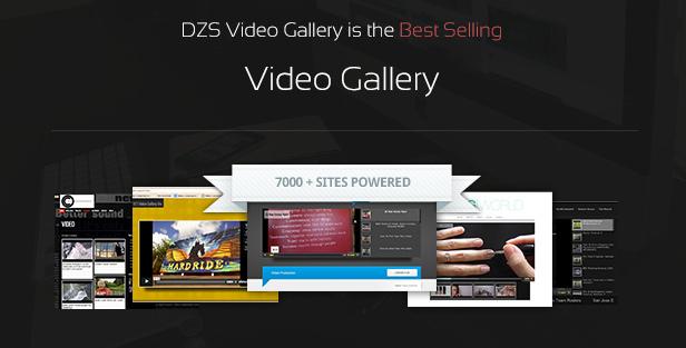 DZS Video Gallery ist die meistverkaufte Video-Galerie