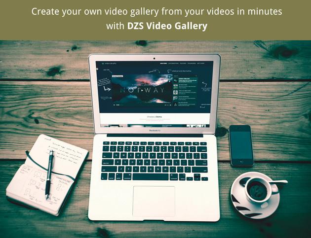 Erstellen Sie in wenigen Minuten Ihre eigene Videogalerie