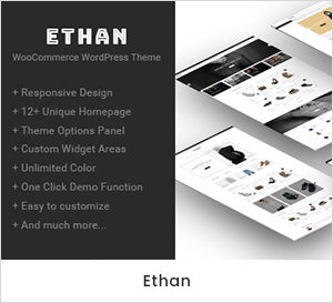 Ethan - Responsive WooCommerce WordPress Layout