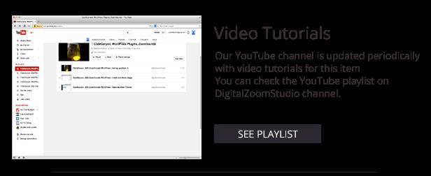 Video Player mit Wiedergabeliste - Cornerstone WP AddOn / w WooCommerce - 8