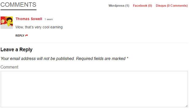 FlatNews - Responsive Magazine WordPress Vorlage - Mehrere Kommentar-System