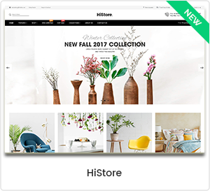 HiStore - Mehrzweck eCommerce & MarketPlace WordPress Template