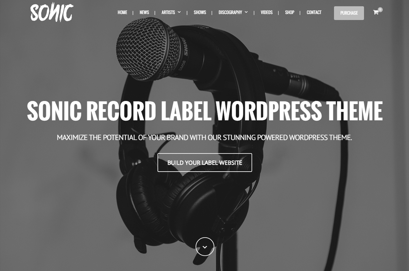 Sonic - Responsives WordPress Layout für die Musikindustrie