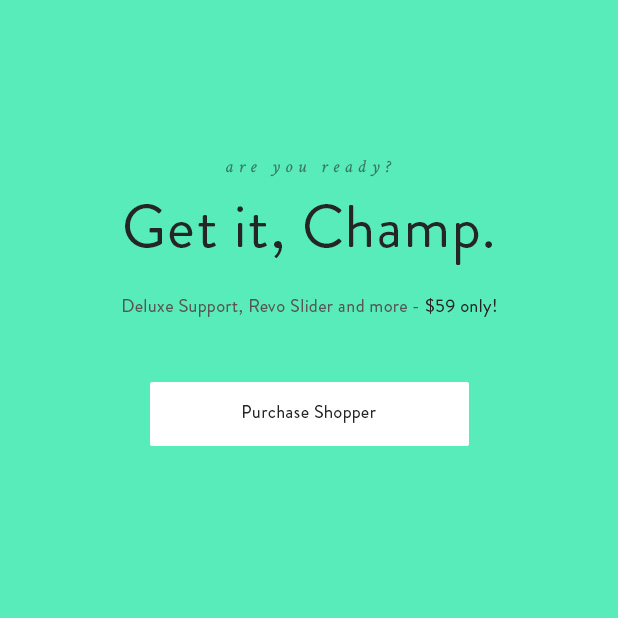 Käufer - Responsive WooCommerce Layout