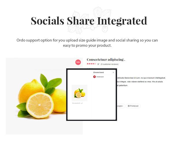 des_10_socials_share_integriert
