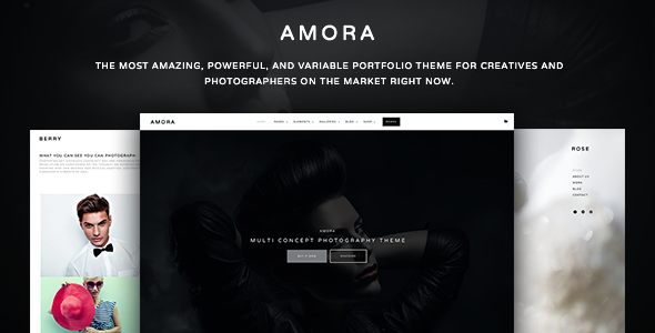 Wordpress Kreativ Template Amora Photography - Creative Multi-Concept Photography Theme