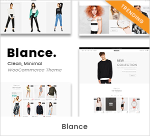 Sauberes, minimales WooCommerce WordPress Theme