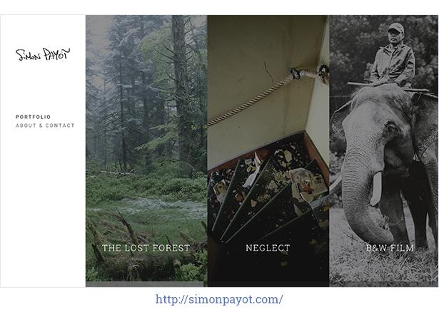 Elster - Horizontales und sauberes Fotografie-Thema