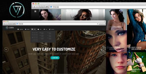 Wordpress Kreativ Template Cobra | Portfolio & Photography WordPess Theme