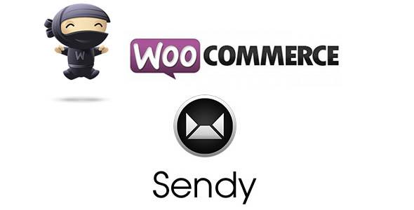 Wordpress E-Commerce Plugin WooCommerce Sendy