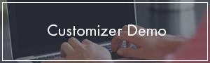 Customizer Demo