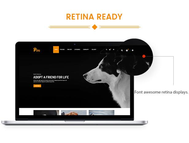 des_18_retina_ready