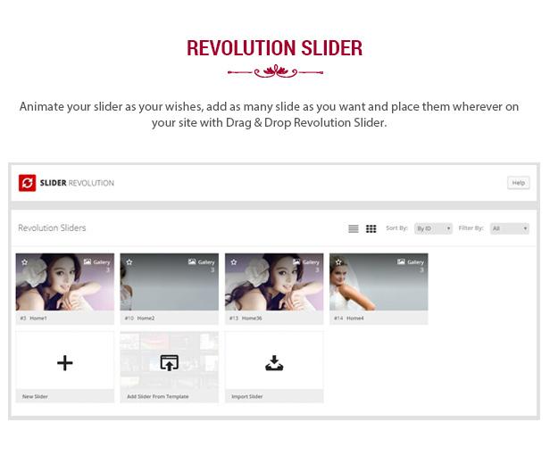 des_07_revolution_slider