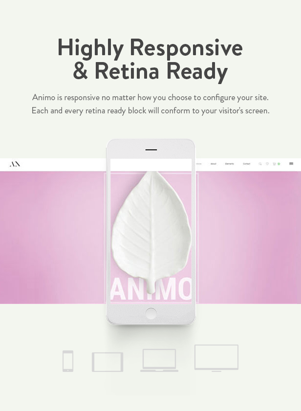 Animo - Kreatives und sauberes Mehrzweck-WordPress-Template - 9