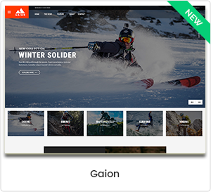 Gaion - Sport Zubehör Shop WordPress WooCommerce Template