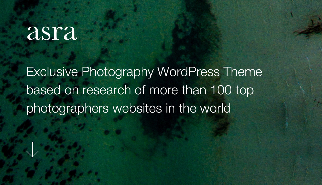 Asra - Minimalistisches Fotografie-Portfolio WordPress-Template - 2