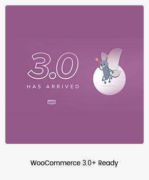 Puca - Optimiertes Mobile WooCommerce Layout - 99