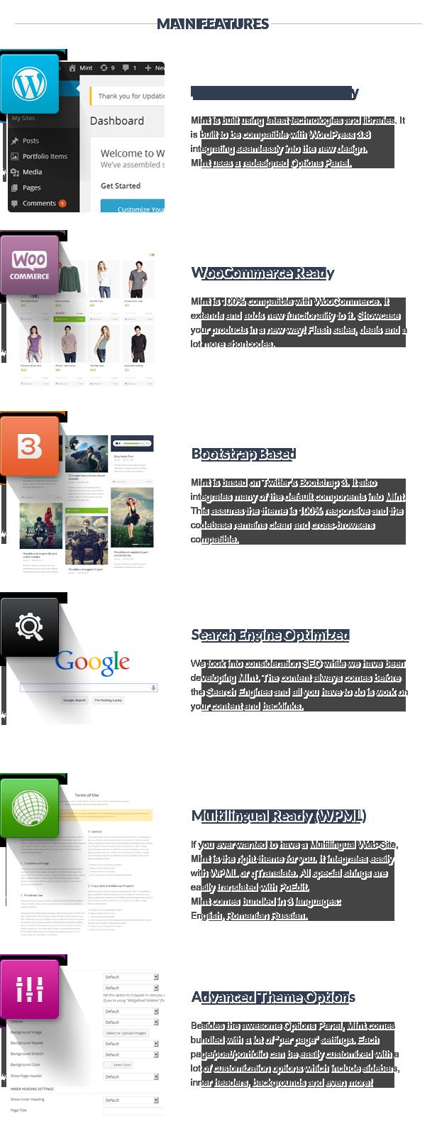 Mint - Responsives Mehrzweck-WordPress-Vorlage - 15