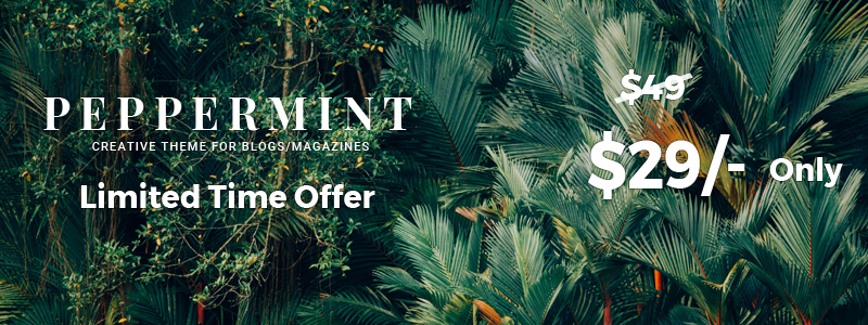 PepperMint - Kreatives WordPress-Layout für Blogs / Mini-Magazine - 4