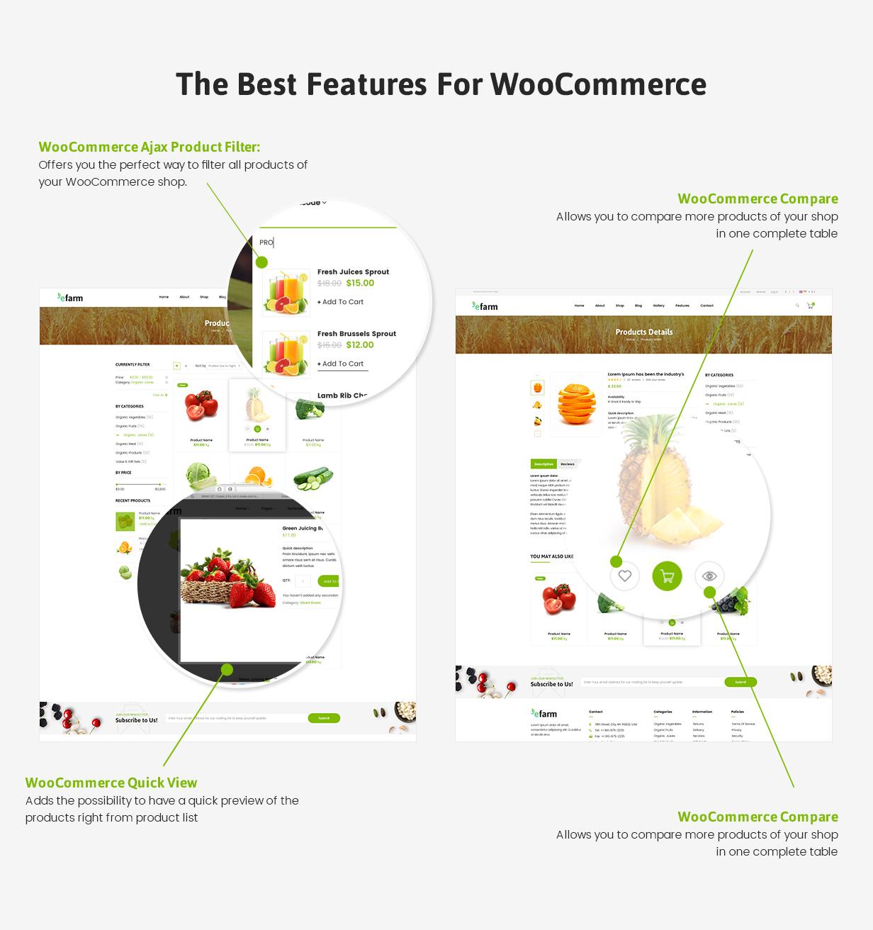 eFarm - Ein vielseitiges WordPress-Layout für Lebensmittel und Farmen - 11