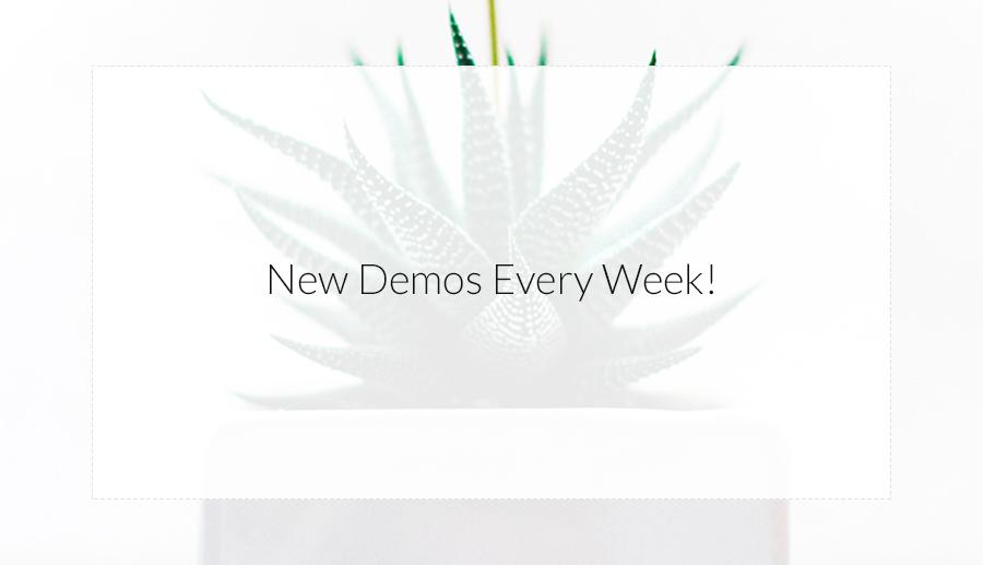 Neue Demos