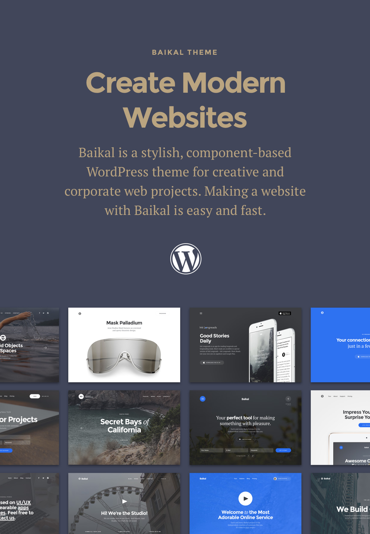Baikal - Responsives WordPress-Mehrzweckthema - 1
