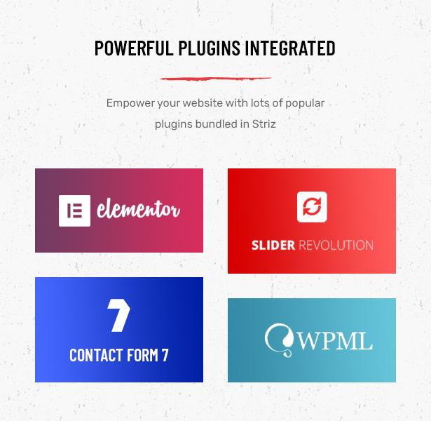 Striz Fashion E-Commerce WordPress Vorlage mit erweiterter Plugins-Unterstützung