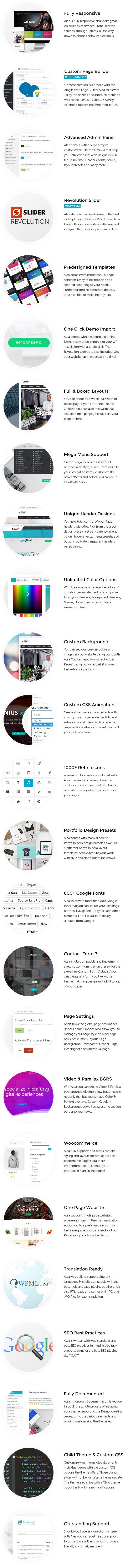 Alea - Business Mehrzweck WordPress Theme - 9