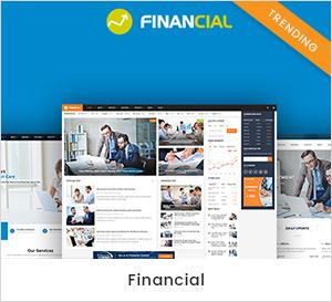 Geschäfts- und Finanz-WordPress-Theme