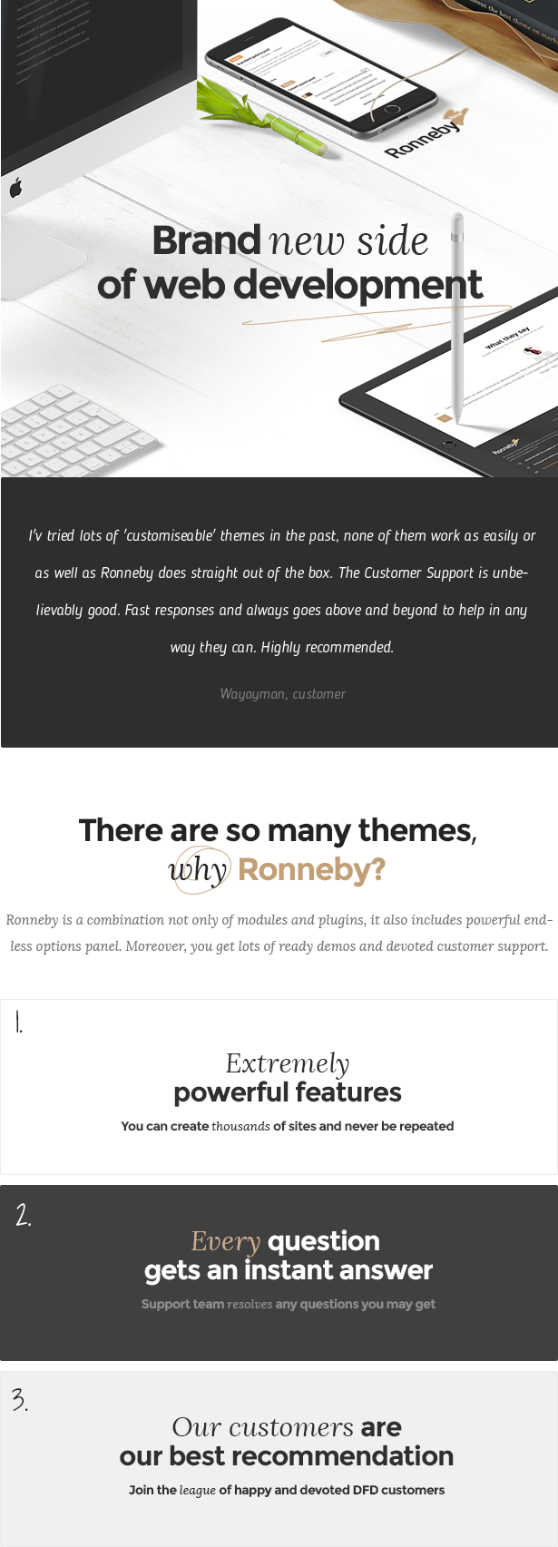 Ronneby - Hochleistungs-WordPress-Theme - 1