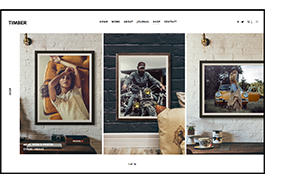 HOLZ - Ein ungewöhnliches Fotografie-WordPress-Thema - 5