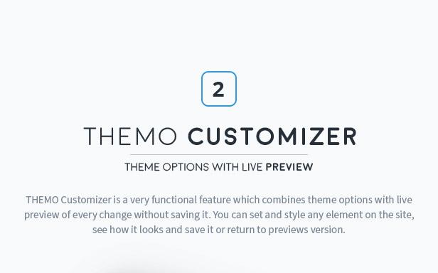 themo customizer