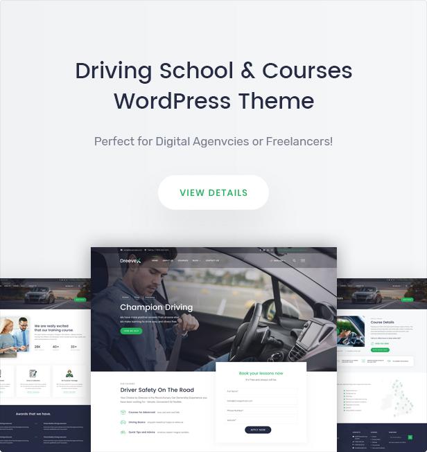 DreeveX - Fahrschule WordPress Theme - 5