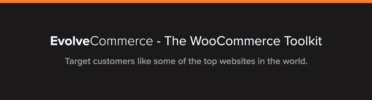 Evolve Commerce - WooCommerce Filter & Toolkit - 2