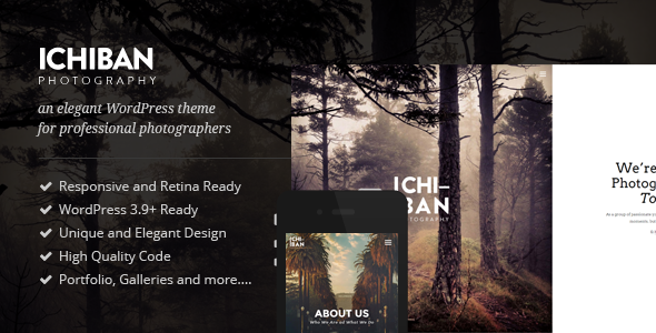 Wordpress Kreativ Template Ichiban - A Theme for Photographers