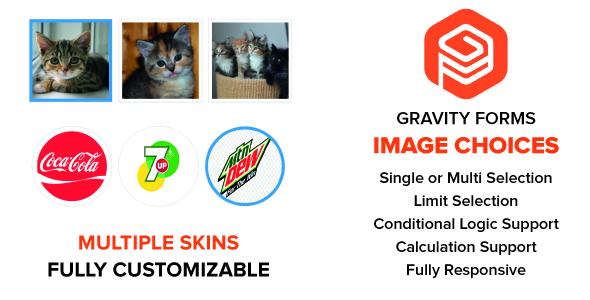 Wordpress Formular Plugin Gravity Forms Image Choices