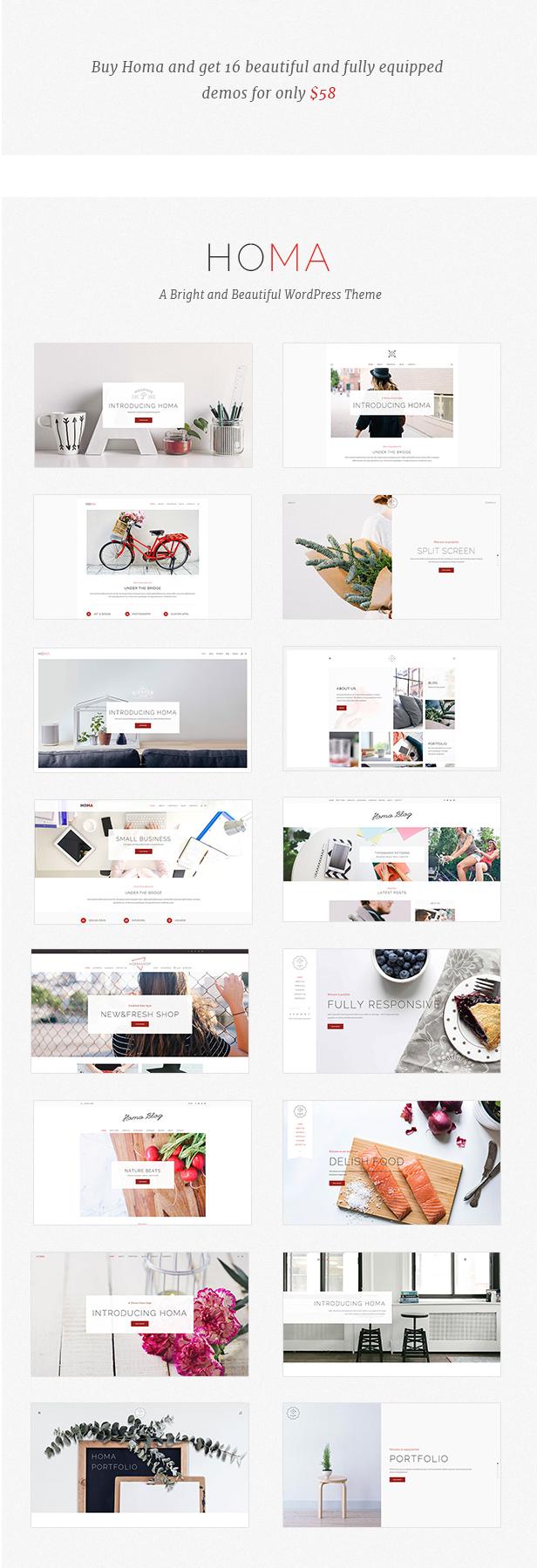 Homa - Elegantes WordPress-Theme - 1