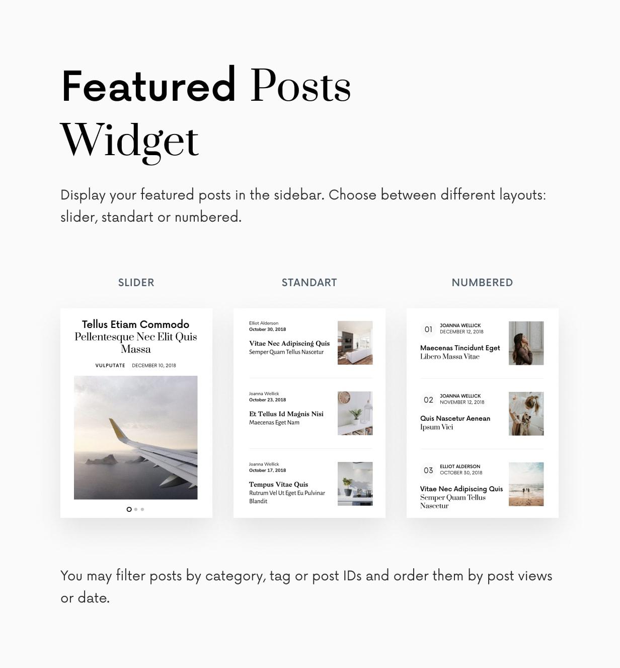 Einmal - Sauberes und elegantes WordPress-Blog-Thema - 43