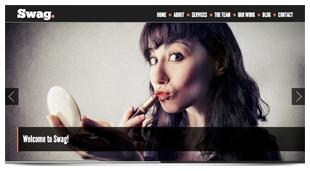 Swag - One Page Parallax WordPress Theme - 2