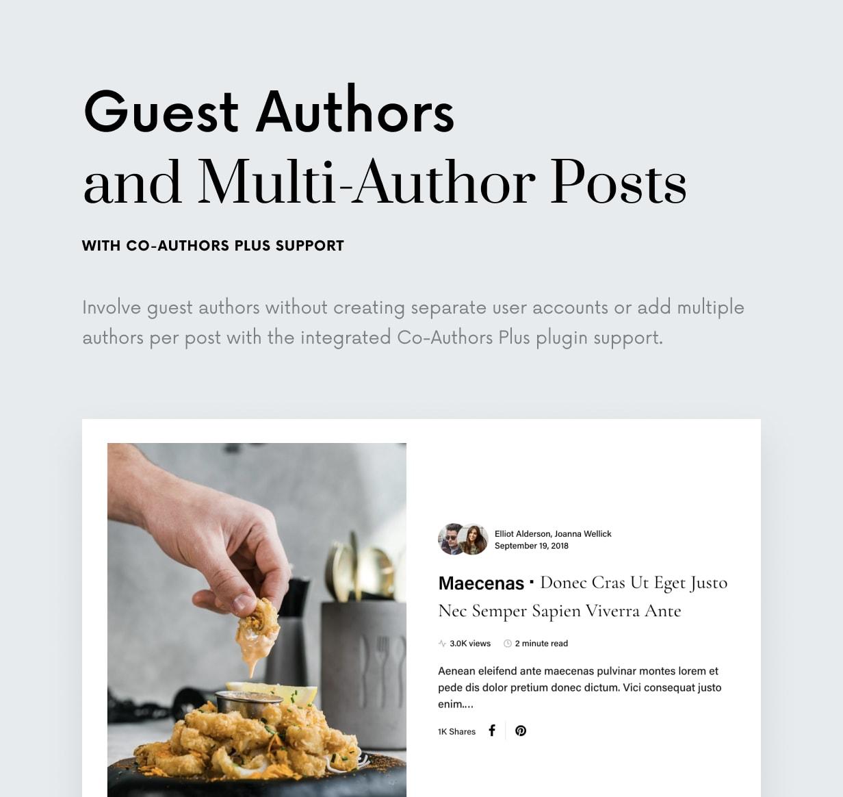Einmal - Sauberes und elegantes WordPress-Blog-Thema - 26