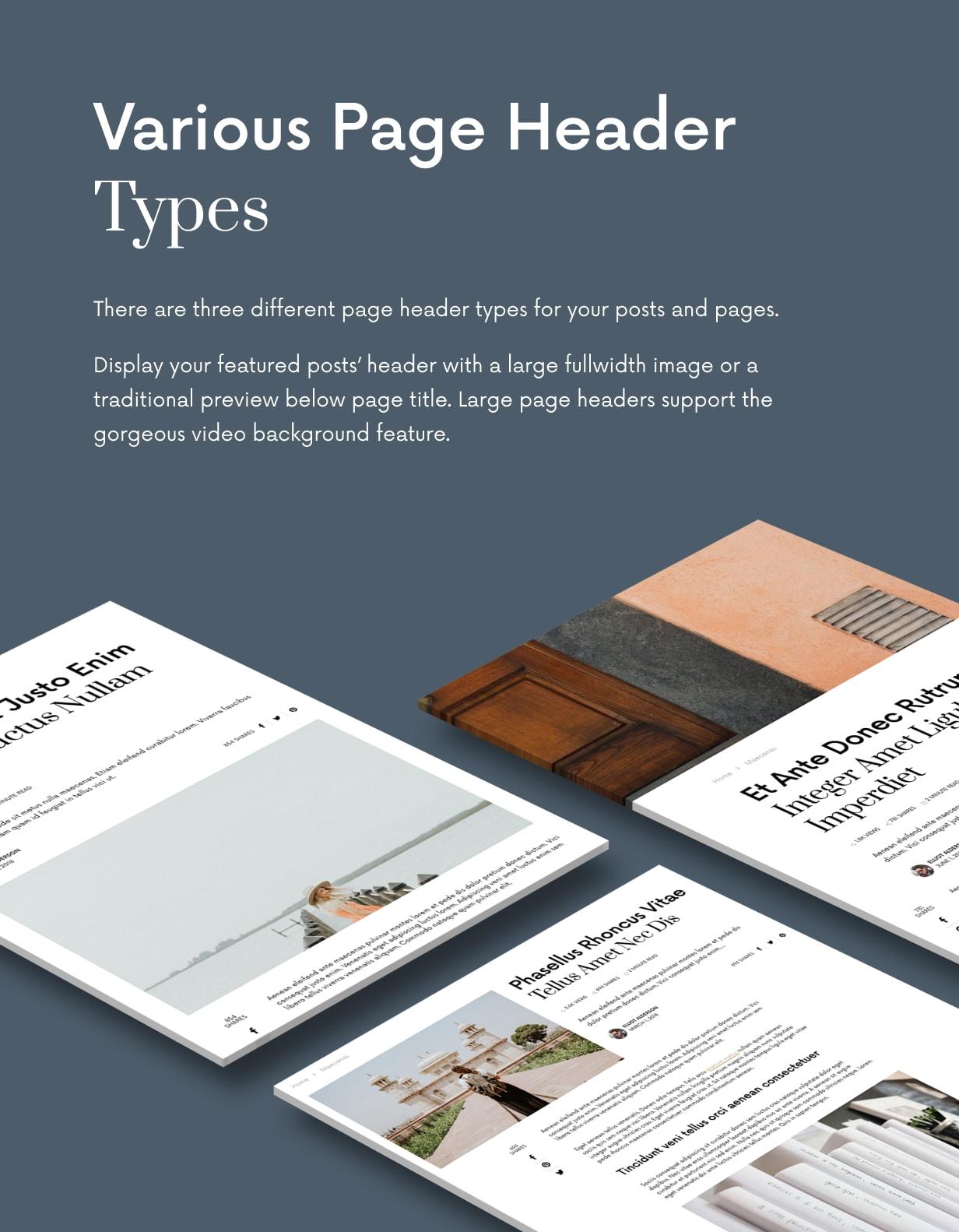 Einmal - Sauberes und elegantes WordPress-Blog-Thema - 31