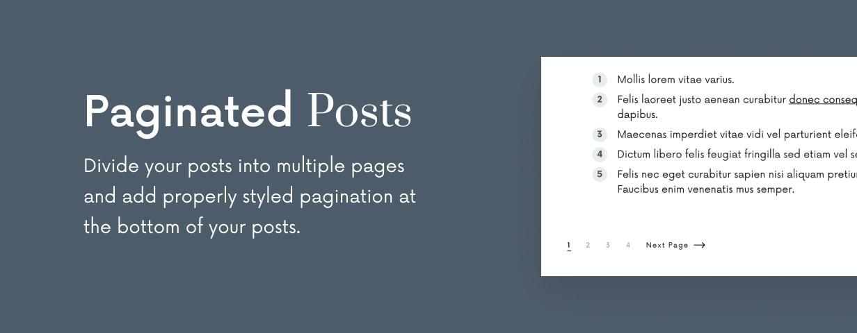 Einmal - Sauberes und elegantes WordPress-Blog-Thema - 23
