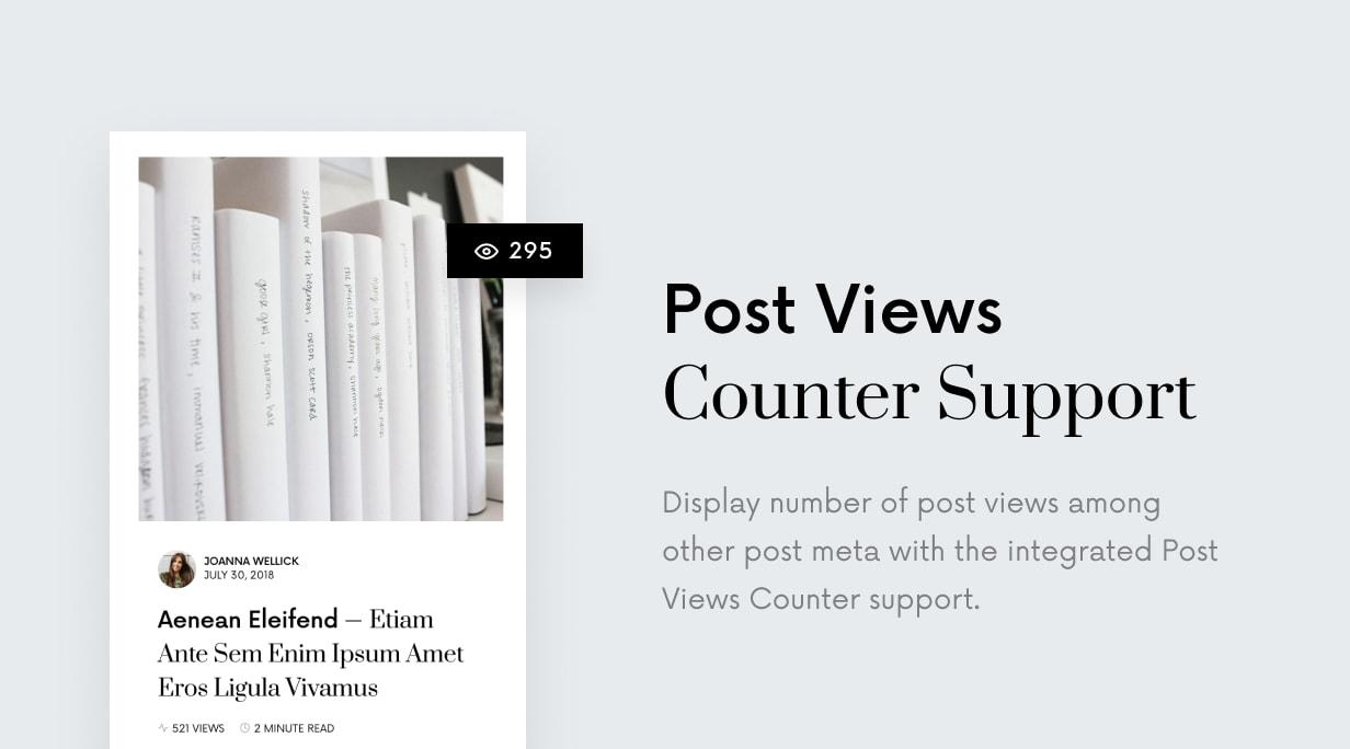 Einmal - Sauberes und elegantes WordPress-Blog-Thema - 51
