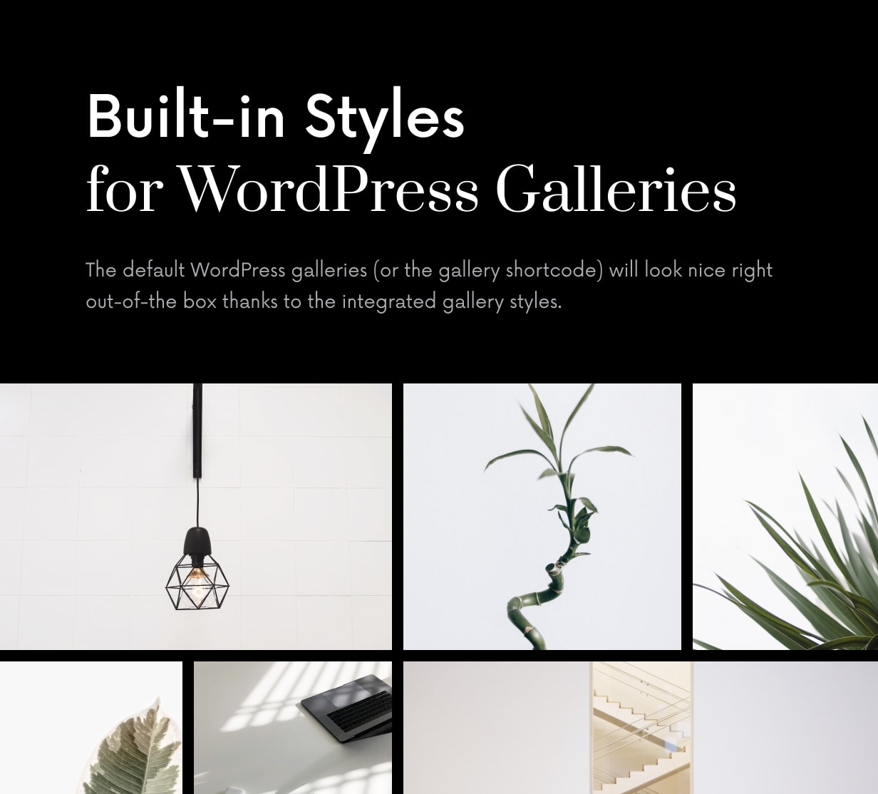 Einmal - Sauberes und elegantes WordPress-Blog-Thema - 46