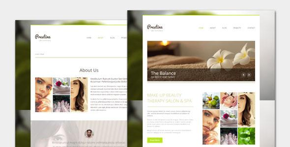 Wordpress Immobilien Template Prestine - Health Beauty Salon Spa WordPress Theme