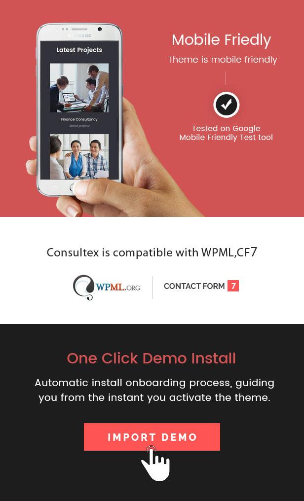 Consultex - Unternehmensberatung WordPress - 3