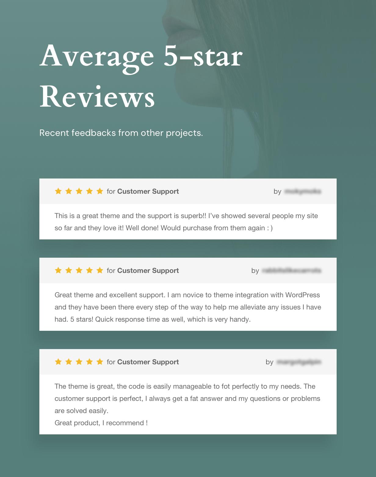 Mykery WordPress Bewertungen
