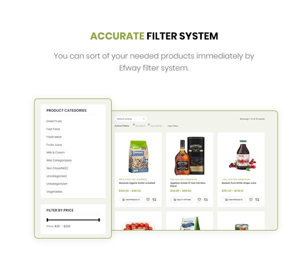 Efway WordPress Theme Leistungsstarkes Filtern