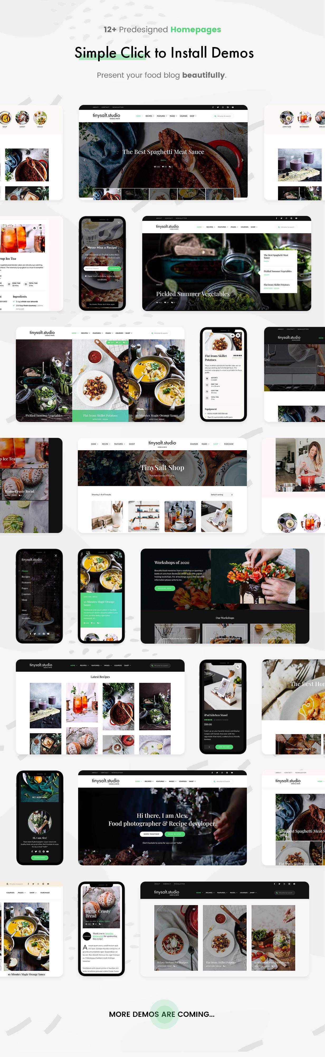 TinySalt - 12+ Homepages.